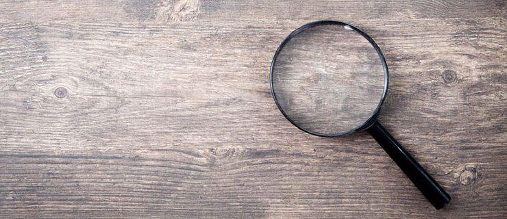 Governance Audit Services - Board Veritas - magnifying glass image