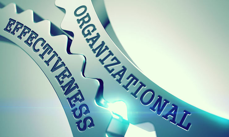 Organizational Effectiveness Services - gears turning
